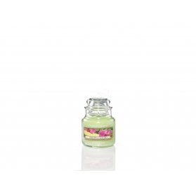 Yankee Candle Pineapple Cilantro SMALL