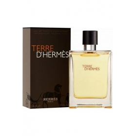Terre D'hermes by Hermes 100 ml Edt